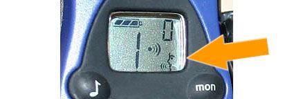 PIN30M Nauze