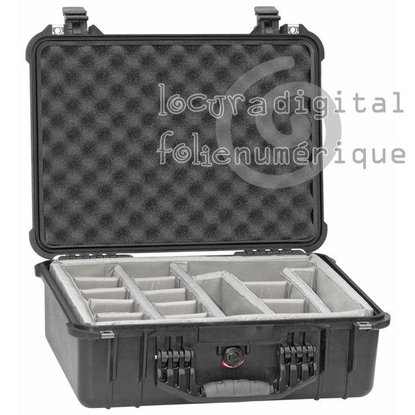 1520-004-110 Protective Case Black with dividers