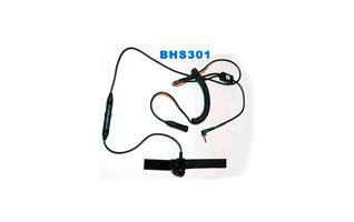 BHS301