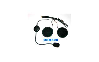 OHS500